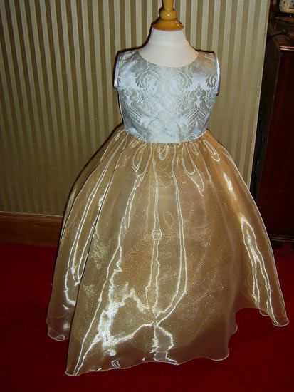 Flower girl gold and silver dress